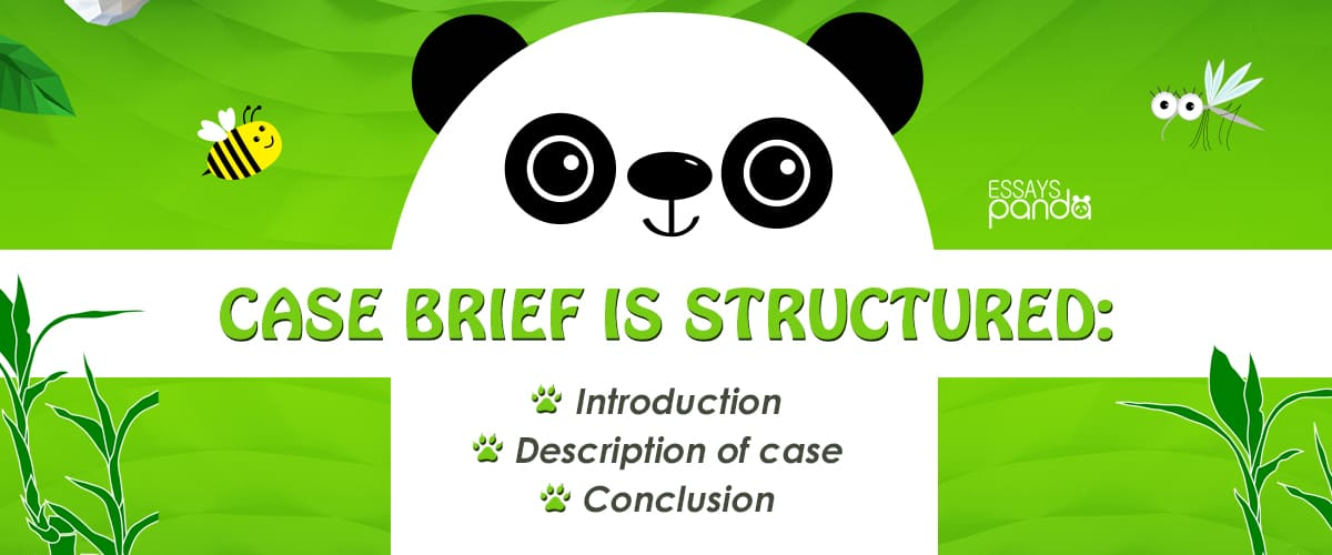 How to Structure a Case Brief?
