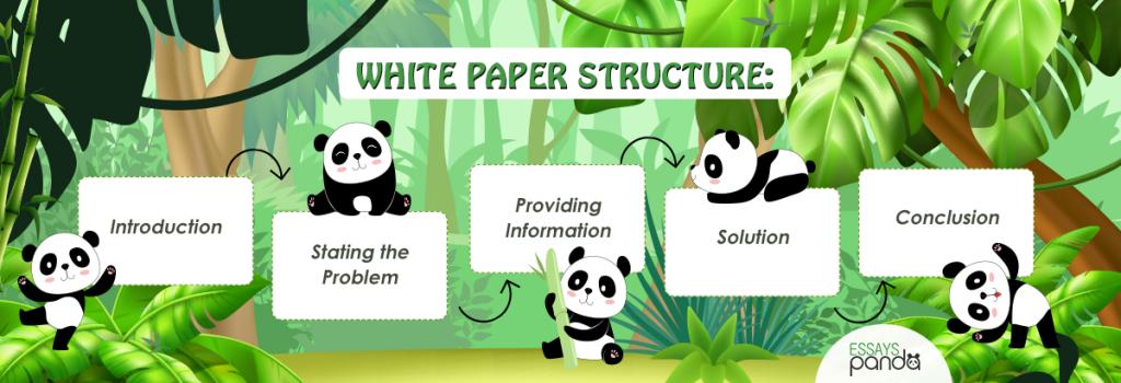 White Paper Structure